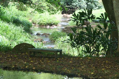 kauai national tropical botanical garden brindavan in the bay area national tropical botanical