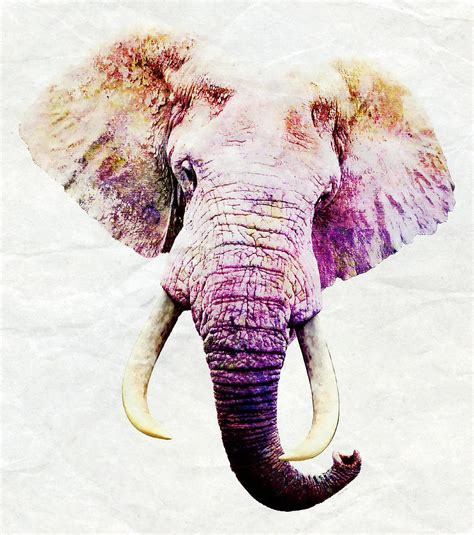 How To Sell Home Decor Online by Elephant Art Mixed Media By Stacey Chiew