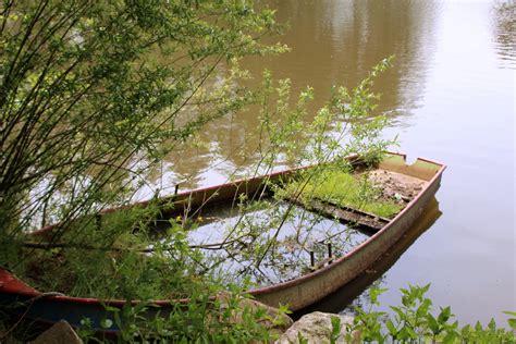 Sepatu Sungai gambar pohon rawa kayu danau tua sepatu bot aliran