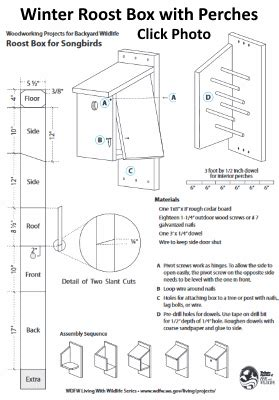 easy winter bird house plans winter roost box