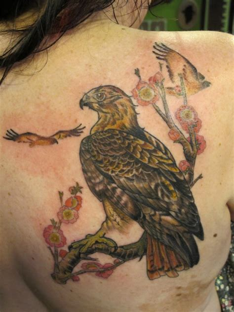 hawks tattoo 30 dramatic hawk tattoos ideas for and magment