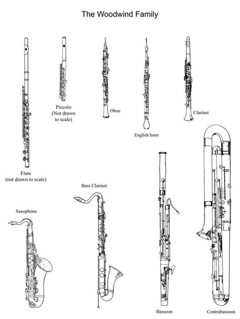 instrument family coloring page pictures of the woodwind family to cut out and color