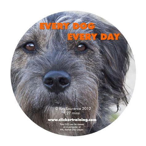 every dogs day every every day book dvd set pryor clicker