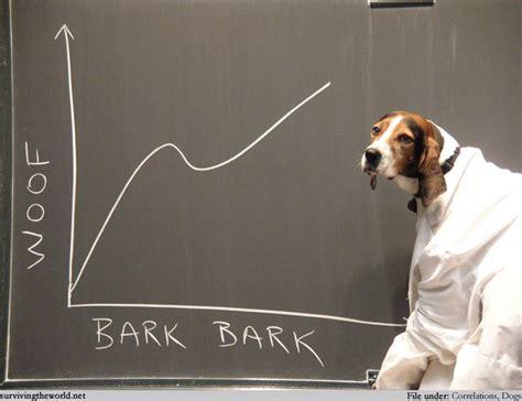 math puppy surviving the world lesson 450 canine math