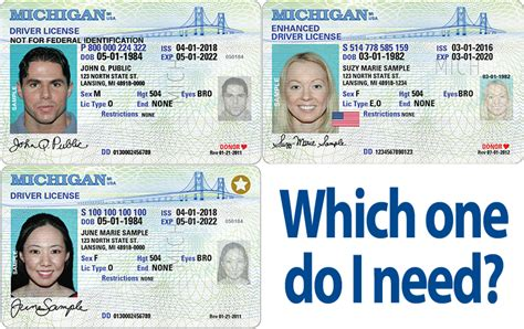 Which One Do I Need? Standard, Enhanced & REAL ID