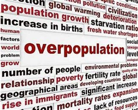Causes Of Overpopulation Essays by Overpopulation Quotes Like Success