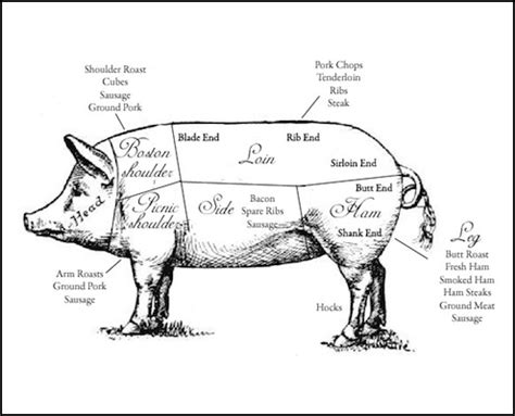 how to butcher a pig diagram 1000 images about butcher charts bbq barbecue barbeque