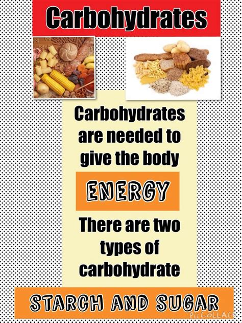 carbohydrates explained 1000 images about gcse catering revision on