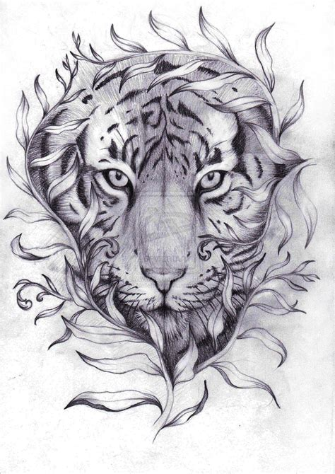 tiger tattoo outline designs tiger designs search coloring