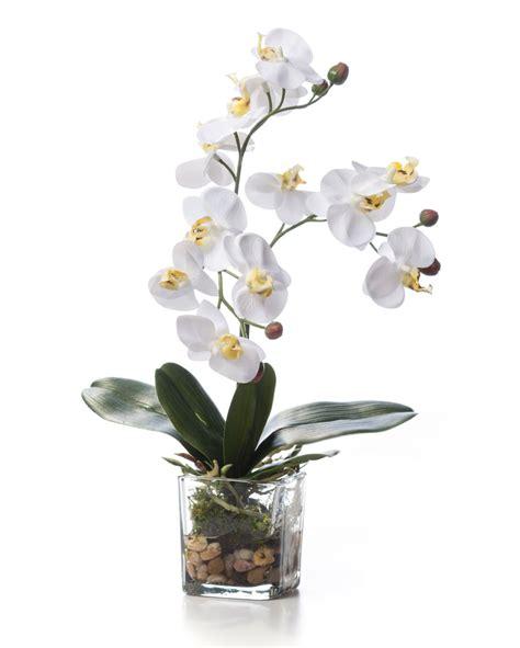 18 Cylinder Vase Lifelike Phalaenopsis Orchid Artificial Accent Arrangement
