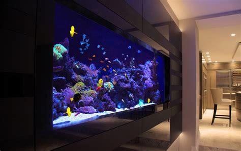 aquarium supplies australiabuy fish tankbuy marine fish