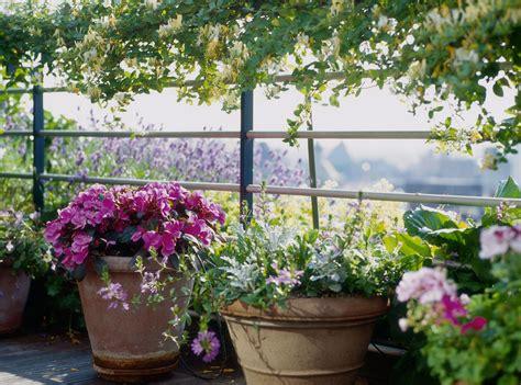 come attrezzare un terrazzo 10 common container gardening mistakes