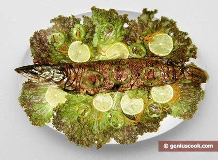 come cucinare il luccio di mare luccio al forno alimentazione dietetica gastronomia