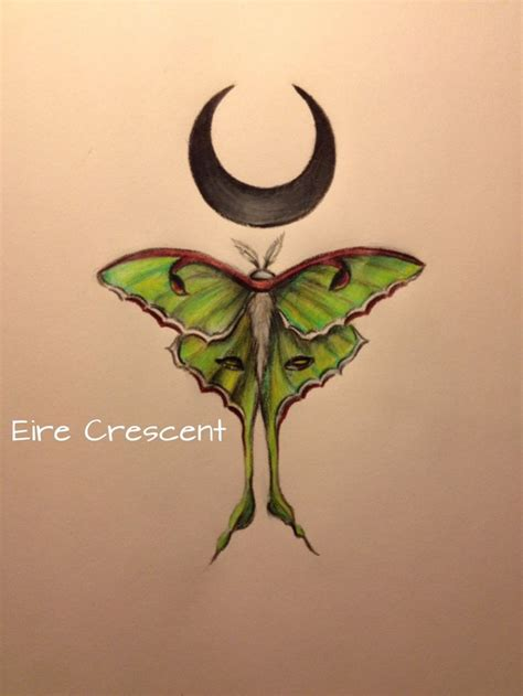 luna moth tattoo best 25 moth ideas on