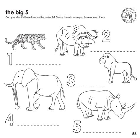 Big 5 Sketches by Big Five Animals Colouring Pages Maggi Locustdesign Co
