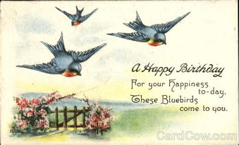happy birthday bird images a happy birthday birds