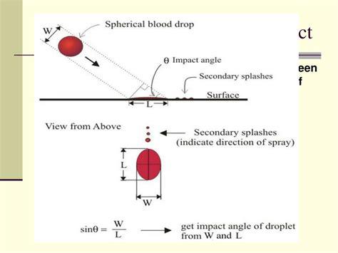 bloodstain pattern analysis pdf blood pattern analysis pdf 100 1024 x 768 blood splatters