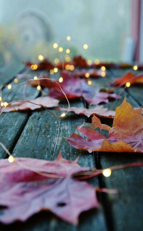 girly autumn wallpaper cute fall background tumblr