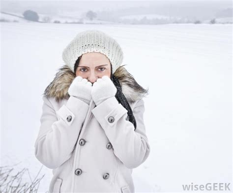The Cold what are the best cold weather gloves with pictures