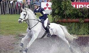 Ah Hoy Ride A Pony Theitlistscom 2 by Sport Photo Galleries Tough Cross Country At Badminton