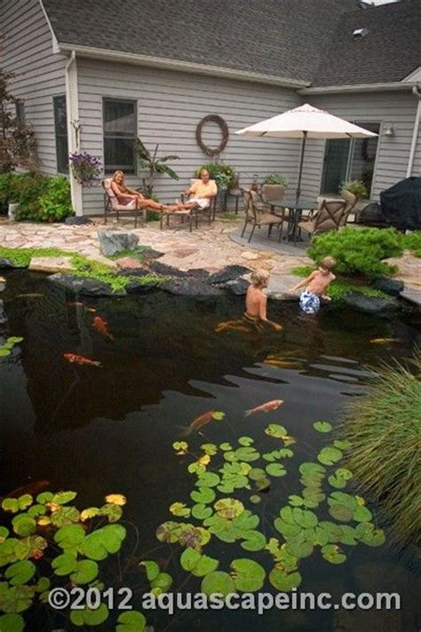 backyard ponds pictures backyard ponds pond pictures pond images pond photos walleye fishing backyard