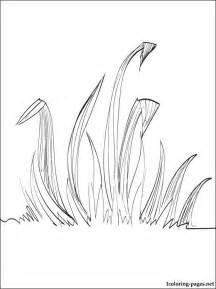grass coloring coloring pages