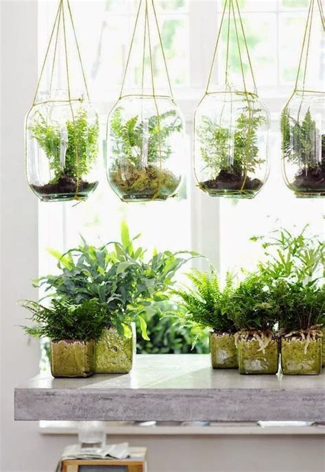 small hanging plants best 25 hanging planters ideas on pinterest diy hanging
