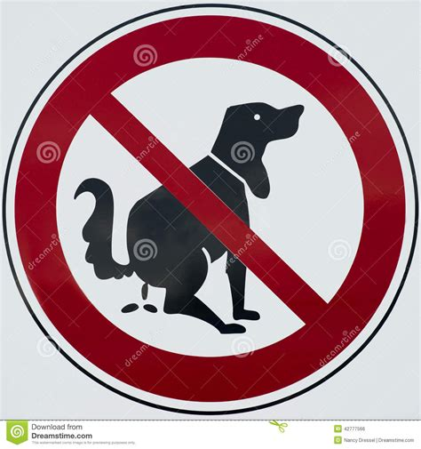 puppy not pooping do not sign stock photo image 42777566