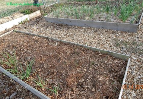 mulch beds how to mulch your garden for free