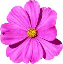 clipart flower 83