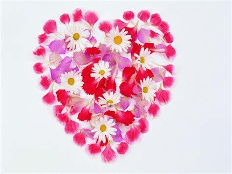 wallpaper flower with heart 1024x768 heart of flowers desktop pc and mac wallpaper