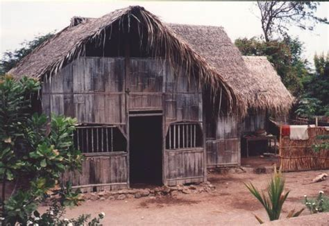 Dirt Floors In Houses by Flores House Dirt Floor Thatched Roof Photo