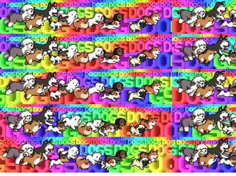 rainbow dogs rainbow dogs 12 on scratch
