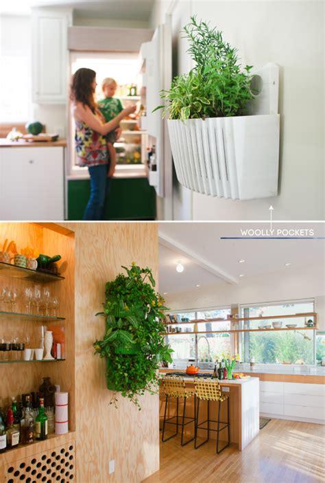 indoor herb gardens pure kitchen