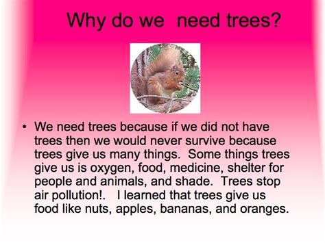 why do we get trees 28 images why do we get trees 28