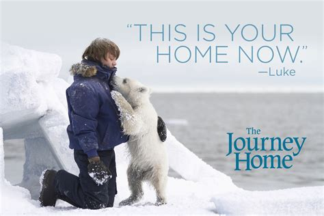 A Journey Home the journey home dvd available at walmart the zone