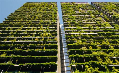 Vertical Garden Architecture Extraordinary Towers In Australia Covered With Vertical