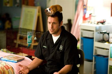 what is a biographical film called all about hollywood stars adam sandler best american