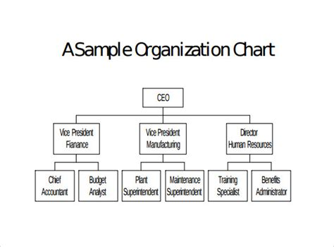 organizational chart template doc sle blank organizational chart 8 documents in pdf