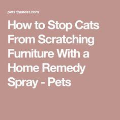 1000 ideas about furniture scratches on