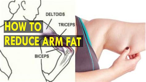 how to downsize how to reduce arm fat health sutra best health tips