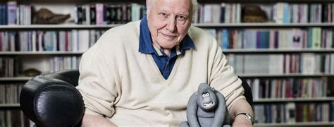 bbc creature comforts aardman and the bbc ask the animals for attenborough s