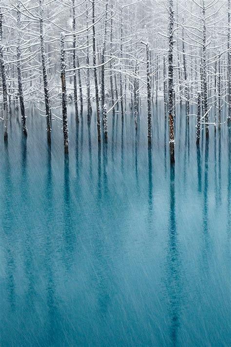 pond l shades 265 best aqua aquamarine azure teal turquoise