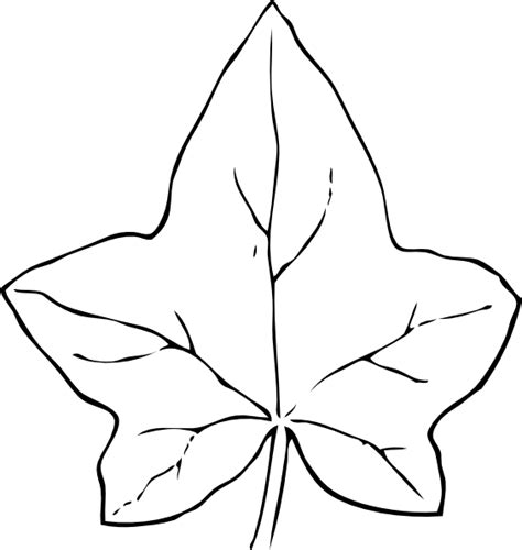 oak leaf template oak leaf template clipart best