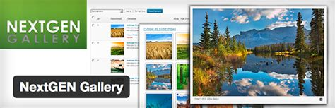 elegant themes gallery plugin a comprehensive overview of the nextgen gallery plugin
