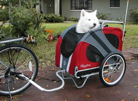 car dogs trailer bike trailer car interior design