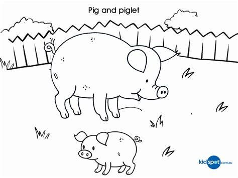 pigs coloring pages coloring home farm animals colouring pages pig coloring home