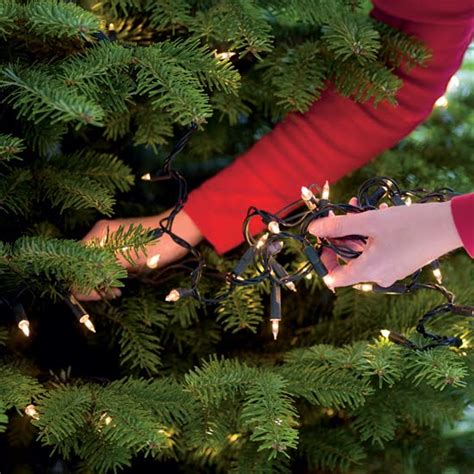 tips on how to put lights on a tree