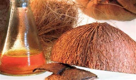 cocomesh sabut mandiri produk olahan tempurung kelapa