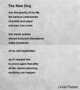 York 500 Bench The New Dog Poem By Linda Pastan Poem Hunter